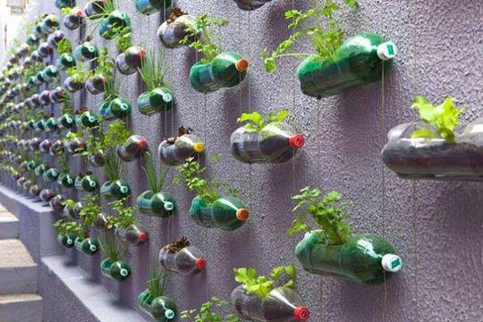 Recycler-bouteille-plastique-jardin-1463010086