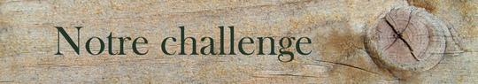 Notre_challenge-1463476015