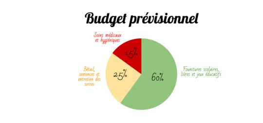 Warita-budget-previsionnel__2_-1463484248