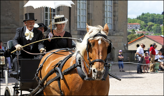 Evenement-cheval2-1463935793