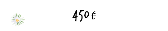 450e_4-1464173759