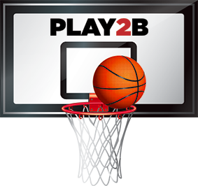 Basketball_net-1464319801