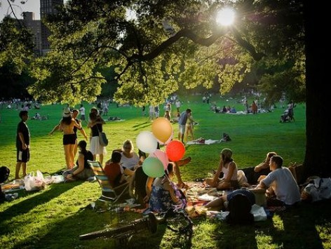 Parc-happy-1465504363