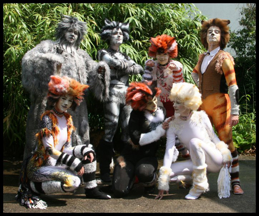 Cats_costumes_4_by_rollwurst-1467074738