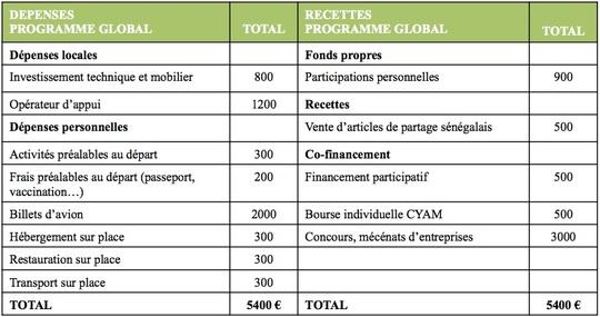 Budget_fp-1467142084