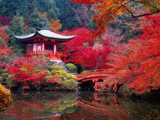 Palais_kyoto-1467621367