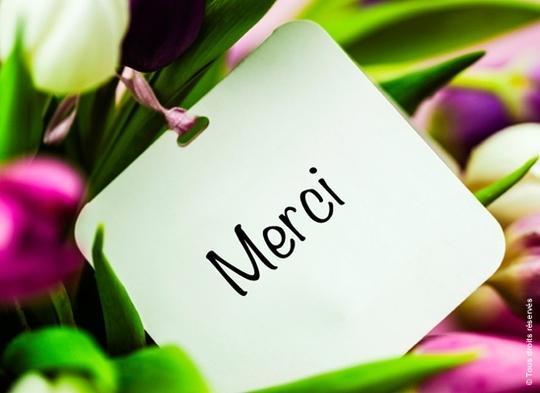 Merci_fleur-1467704908
