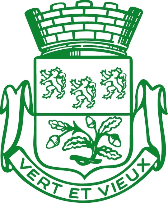 Logo_ville_de_verviers-1468420431