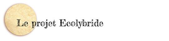 Le_projet_ecolybride-1470649759