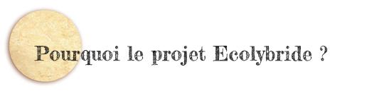 Pourquoi_le_projet_ecolybride-1470837590
