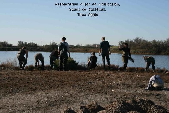 Ilot_nidification-1471537936