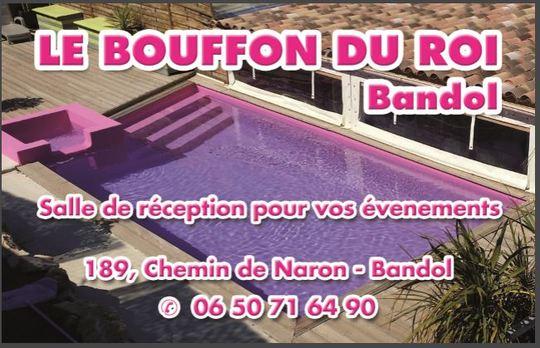 Logo_bouffon_du_roi-1472473815