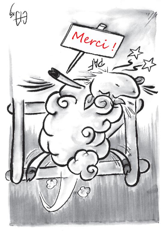 Mouton_merci_invers_-1472899540