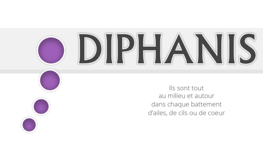 Anim_diphanis-1473706599