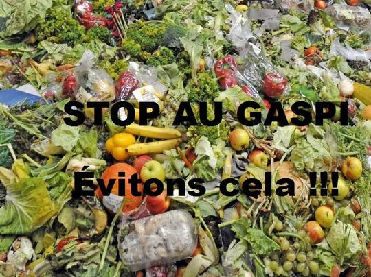 Photo_gaspillage_alimentaire-1474043466