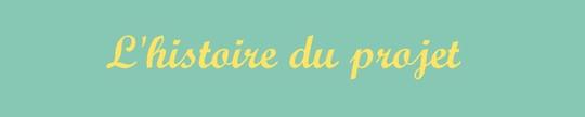 L_histoire_du_projet_-1474919080