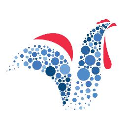 Logo_afcs_sans_fond-1474968124