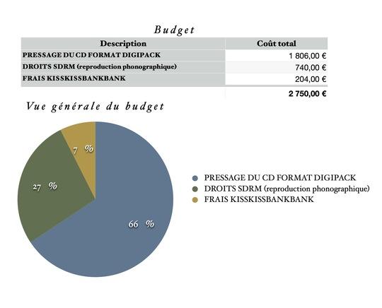 Graphique_budget-1475411208