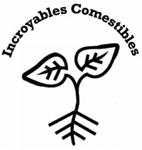 Logo-200x211-1475667043
