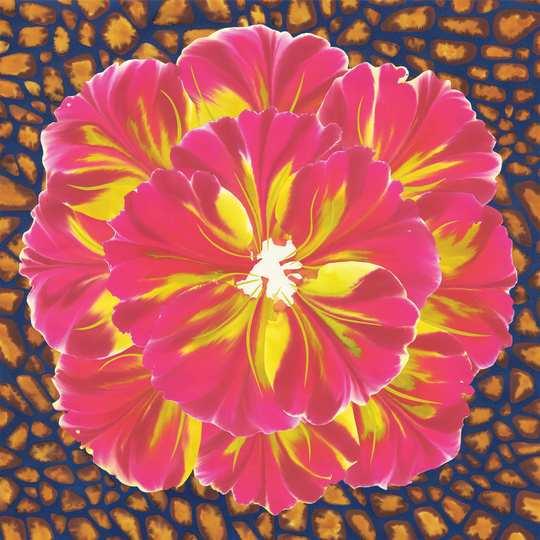 Fleur_1_low-1476111907
