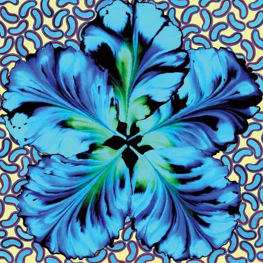 Fleur_2_bleue_low-1476112101