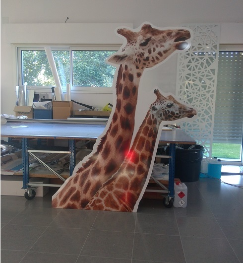 Girafe-1476207334
