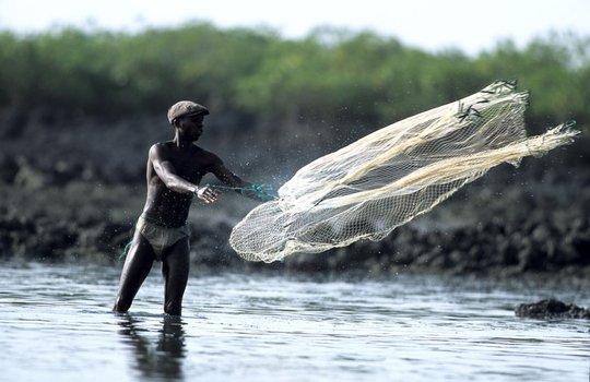Guinea_bissau_21_by_plastikmodels-1476443520