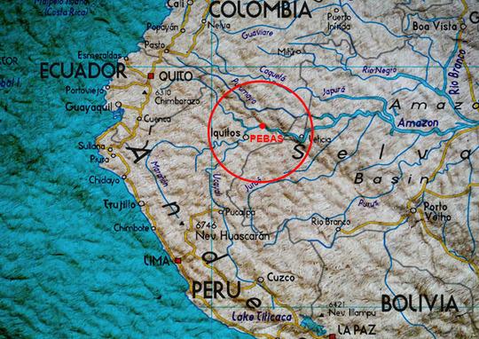 Plan-rainforest-1476551056