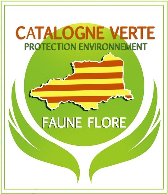 Logo_catalogne_verte_-_coul-1477570598
