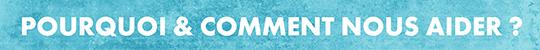 Gc-webserie-bandeaux-titres6-1477909893