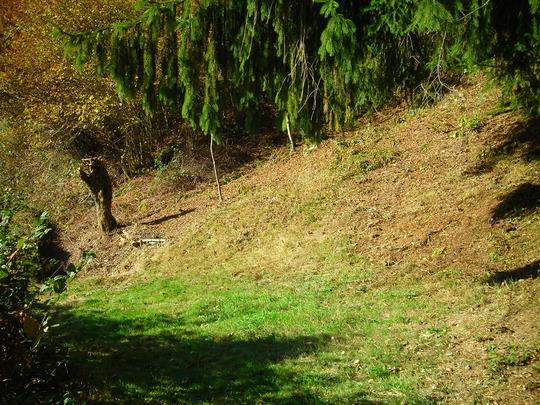 Nettoyage-d-automne__2_-1478106037