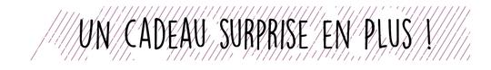 Cadeau-surprise-1479205144