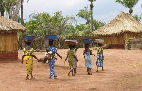 Benin_pays_diapo4-1479830347