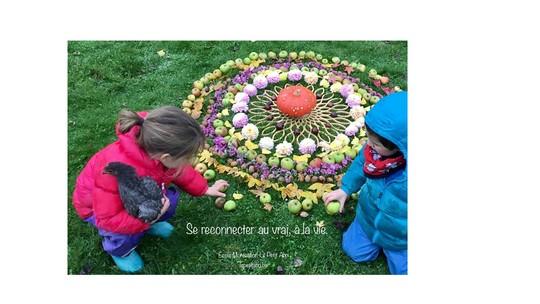Image1-1480084640