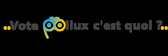 Titre_2_vote_pollux_c_est_quoi_point_jaune___logo_couleur-1480502993