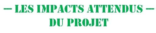 Impacts1-1480624271