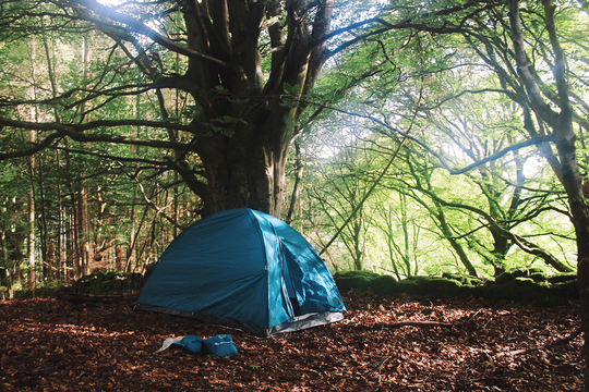 Camping-1480707523