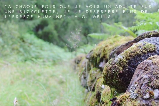 Quote_in_french-1480708854