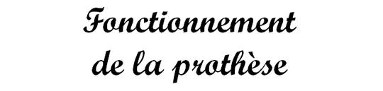 Fonctionnement_de_la_proth_se_66-1480875240