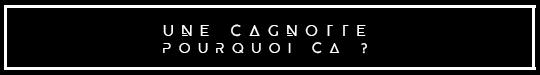Unecagnotte-1482159031