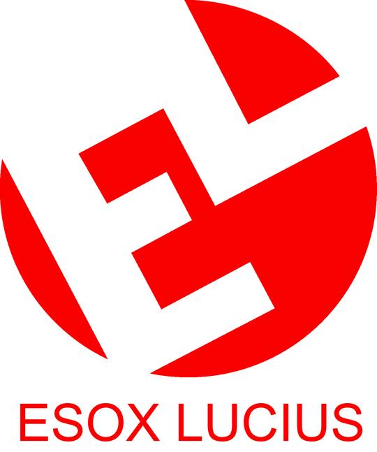 Logoesox-1482345581