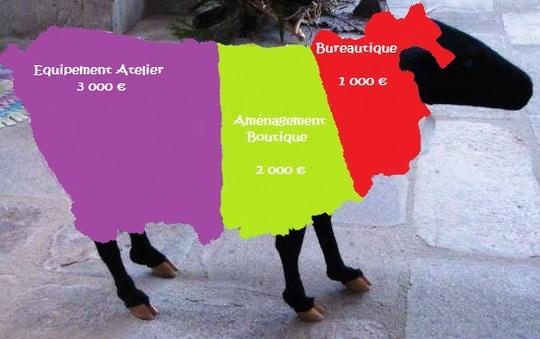 Mouton_6000_euros-1482507142
