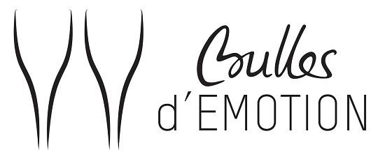 Logo_bulles_d_emotion_540x218jpg-1483370923