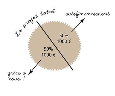 Graphique_financement-1483701672