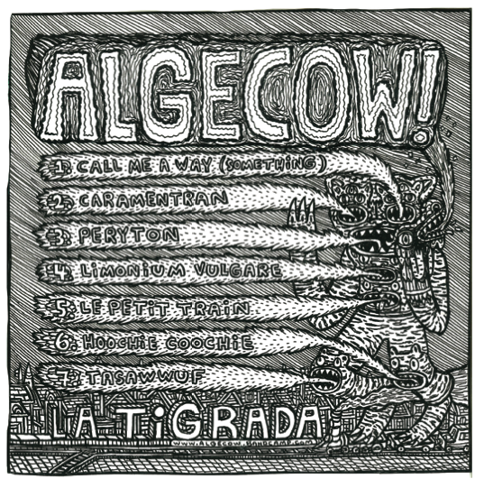 Visuel_page_algecow-1484152524