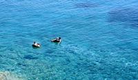 Swimmers_11conc_mini_modifi_-1-1484160050