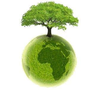 Anglais-environnement-1485254489