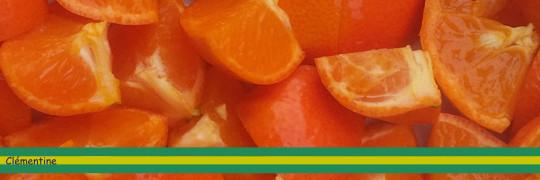Clementine_bandeau-1486145270