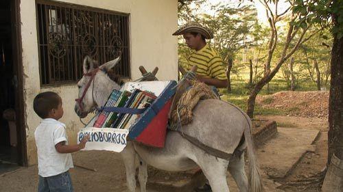 Biblioburro-donkey-500x281-1486396957