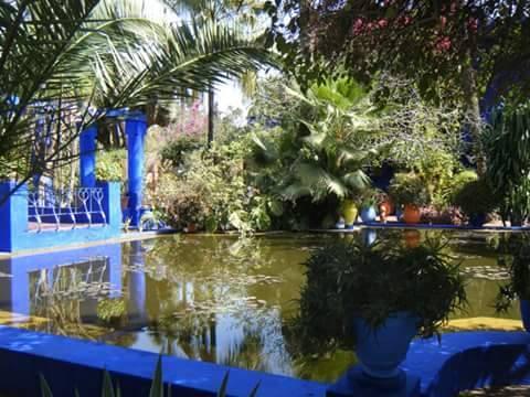 Plantes_majorelle-1486980824
